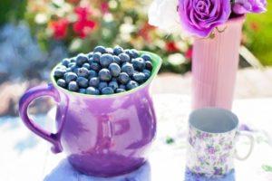 blueberries-summer-fruit-fresh-healthy-sweet